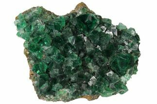 Fluorite  - Fossils For Sale - #132990