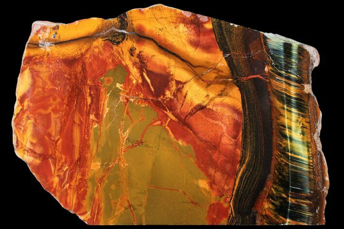 "8.2"" Marra Mamba Tiger's Eye Slab - Mt. Brockman (2.7 Billion Years)"