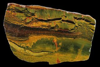 "Buy 4.1"" Marra Mamba Tigers Eye Slab -Mt. Brockman (2.7 Billion Years) - #133063"
