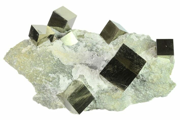 "6.7"" Cluster Of Shiny, Natural Pyrite Cubes - Navajun, Spain"