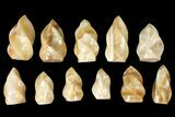 "Wholesale Lot: 3-5"" Polished Calcite ""Flames"" - 11 Pieces - #133858-1"