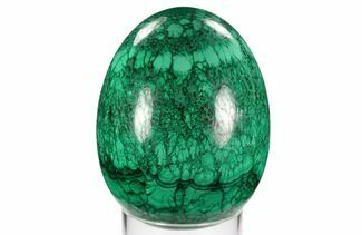 "Stunning, 5.4"" Polished Malachite Egg - Congo For Sale, #129539"