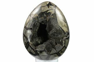 "Bargain, 8.9"" Septarian ""Dragon Egg"" Geode - Black Crystals For Sale, #134633"