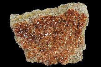"2"" Ruby Red Vanadinite Crystals on Barite - Morocco For Sale, #134684"