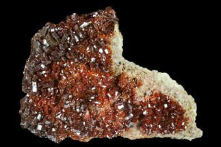 "2.4"" Ruby Red Vanadinite Crystals on Barite - Morocco For Sale, #134702"
