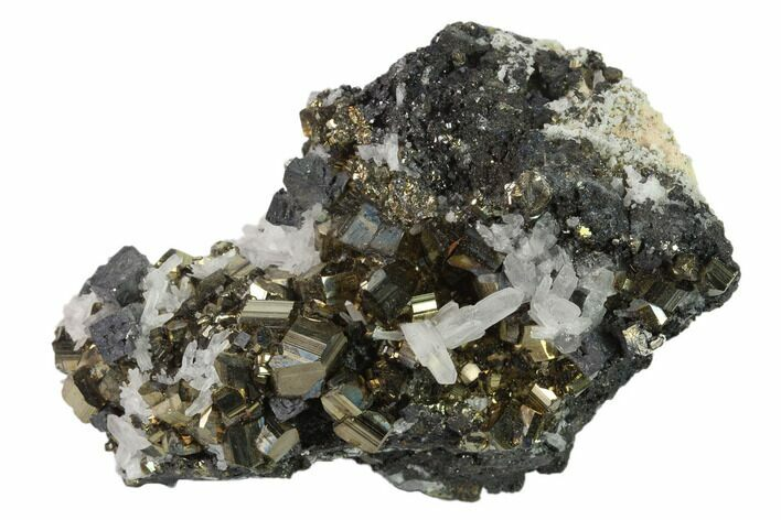 "3"" Galena, Pyrite and Quartz Association - Peru"