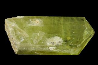 "1.2"" Gemmy, Yellow Apatite Crystal - Morocco For Sale, #135392"