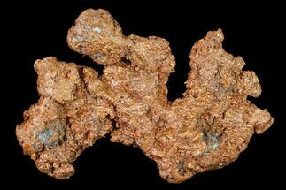 Copper - Fossils For Sale - #136674