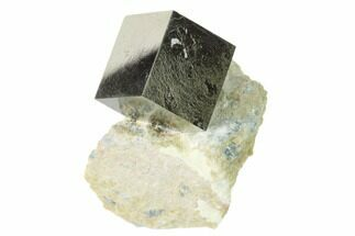 Pyrite - Fossils For Sale - #136716