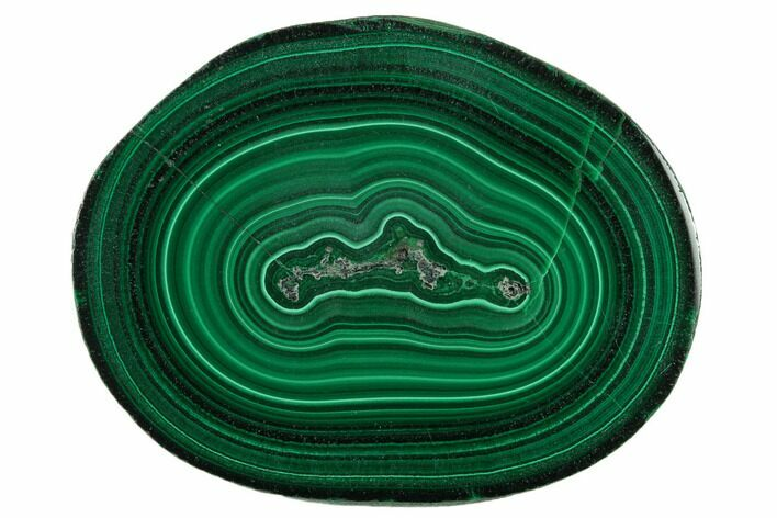 "2.05"" Polished Malachite Stalactite Slice - Congo"