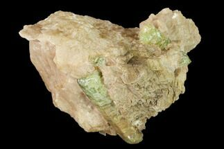 Fluorapatite & Calcite - Fossils For Sale - #137115