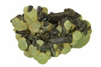 Prehnite & Epidote - Fossils For Sale - #137544