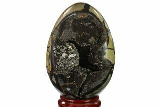 "6.9"" Septarian ""Dragon Egg"" Geode - Black Crystals For Sale, #137954"