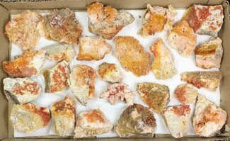 "Lot: 2-3"" Bladed Barite With Vanadinite - 26 Pieces For Sale, #138116"