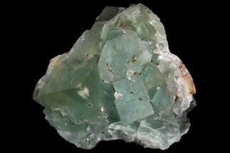 "Buy 2.6"" Sea-foam Green, Cubic Fluorite Crystal Cluster - Morocco - #138250"