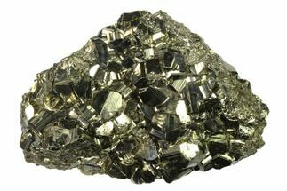 Pyrite - Fossils For Sale - #138138