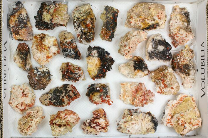 "Wholesale Lot: 1.5 - 2.5"" Bladed Barite With Vanadinite - 26 Pieces"