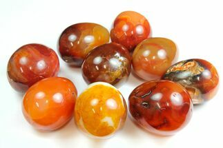 "1.5"" - 1.7"" Polished Carnelian Agate Egg For Sale, #138839"