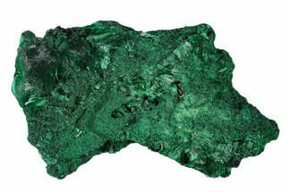 "Buy 2.8"" Forest Green, Fibrous Malachite Cluster - Congo - #138649"
