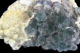 "3.5"" Green Octahedral Fluorite and Calcite Crystal Association - China - #138703-2"