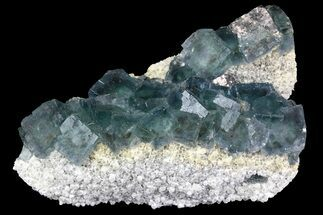 "Buy 4.4"" Cubic, Blue-Green Fluorite Crystals on Quartz - China - #138712"