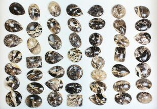 Wholesale Lot: Polished Madagascar Black Opal Pendants - 50 Pieces For Sale, #138977