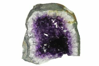 "Buy 4.5"" Amethyst Cut Base Crystal Cluster - Uruguay - #138895"
