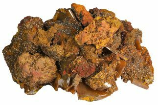"Buy 2.1"" Brown Wulfenite Crystal Cluster - Los Lamentos, Mexico - #139795"