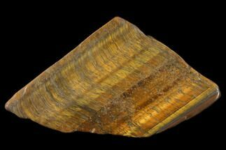 "Buy 2.5"" Polished Tiger's Eye Slab - South Africa - #140515"