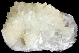 "Buy 6.6"" Fluorescent Calcite Crystal Cluster on Barite - Morocco - #141028"