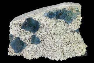 Fluorite & Quartz - Fossils For Sale - #142374