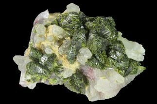"1.8"" Lustrous Epidote with Quartz Crystals - Morocco For Sale, #142712"
