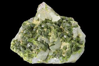 Epidote & Quartz - Fossils For Sale - #142731