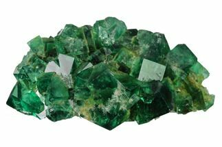 Fluorite  - Fossils For Sale - #143052
