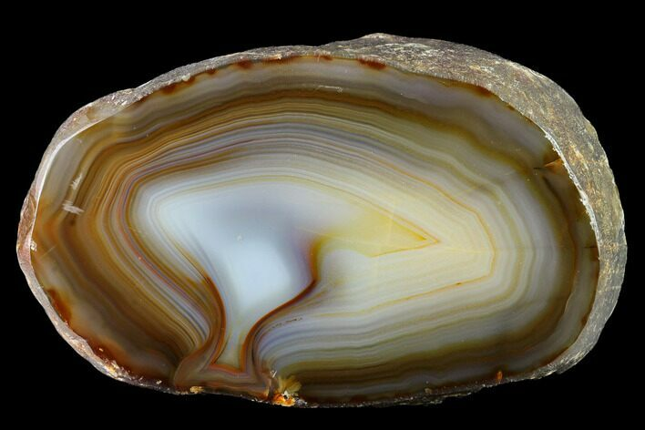 "5.6"" Polished Brazilian Agate Section"