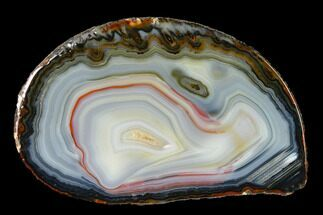 "4.6"" Cut & Polished Brazilian Agate With Colorful Banding For Sale, #146270"