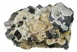 "2.2"" Quartz Encrusted Galena and Fluorite Crystals - Rogerley Mine - #146247-1"