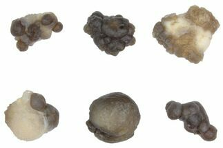 Buy Small Spheroidal Chalcedony Nodules From Morocco - #149302