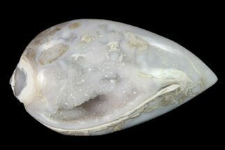 "1.31"" Chalcedony Replaced Gastropod With Druzy Quartz - India For Sale, #150209"