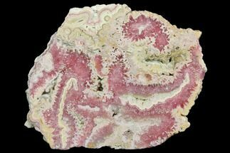 Rhodochrosite  - Fossils For Sale - #150801