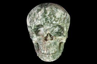 "4.9"" Realistic, Polished Tree Agate Skull  For Sale, #150875"