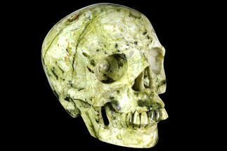 "6"" Realistic, Polished ""Yellow Turquoise"" Jasper Skull - Magnetic For Sale, #151208"