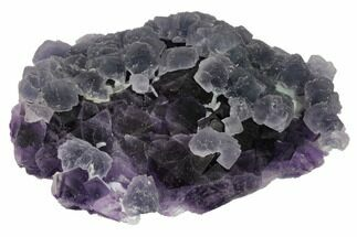 "5.4"" Blue Fluorite Over Purple Octahedral Fluorite - Fluorescent! For Sale, #149756"