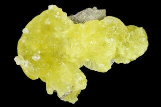 "Buy 1.7"" Lemon-Yellow Brucite - Balochistan, Pakistan - #155233"