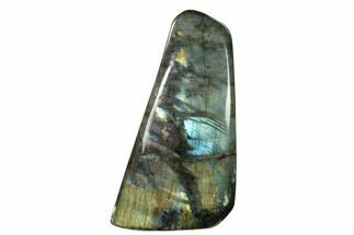 "Buy 7.4"" Flashy, Polished Labradorite Free Form - Madagascar - #154168"