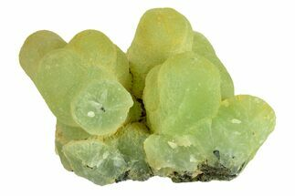 Prehnite & Epidote - Fossils For Sale - #156711