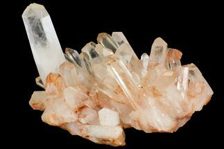 "9.7"" Tangerine Quartz Crystal Cluster - Madagascar For Sale, #156959"