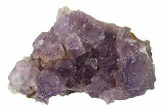 "Buy 3"" Stepped Purple Fluorite Crystal Cluster - China - #160747"