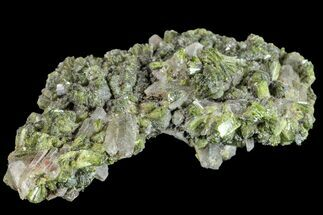 Epidote & Quartz - Fossils For Sale - #161136