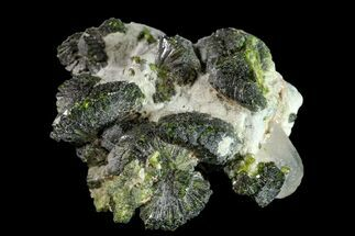 Epidote & Quartz - Fossils For Sale - #161139